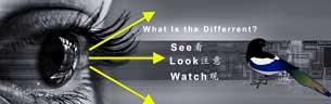Different between see look watch
